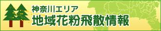 神奈川エリア 地域花粉飛散情報